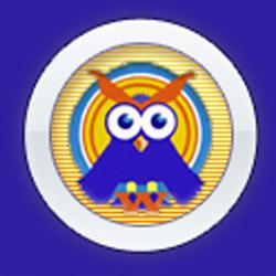 Elder Wisdom Circle Owl