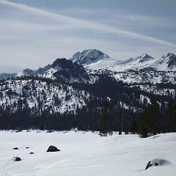 snowy winter view